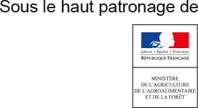 ibma-colloque-patronage